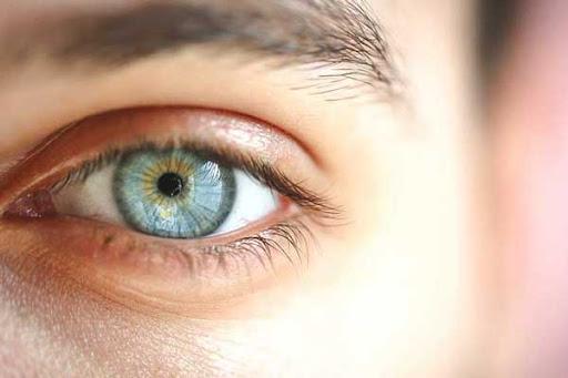 اجزای چشم - لنز رنگی